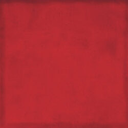 Obklad Juicy cherry  19,7x19,7-PAGRDD20/139